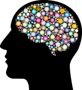 brain, superagers